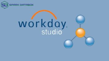 About Workday Studio