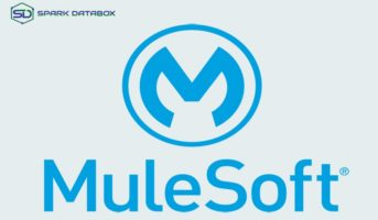 MuleSoft: The Solution for Your Connections