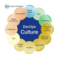 What do you think of the DevOps culture?